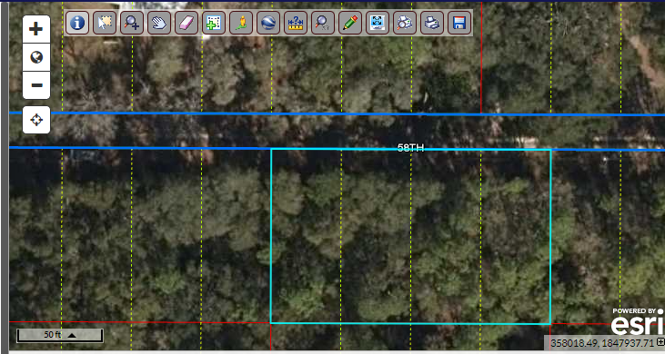 160′ x 100′ feet – Florida land for sale by owner – Build your Dream Home here!  7 miles to Suwannee River boat ramp (Fowler's Bluff)