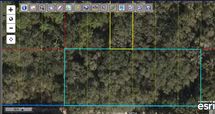 .55 acre (over 1/2 acre) ready for your Dream Cottage/Cabin – 7 minutes to the Suwannee River / North Florida Land for Sale By Owner